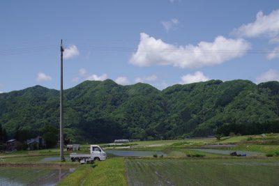 田んぼと山